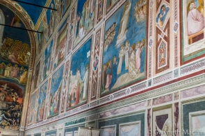 Matua, Padua and Verona-5