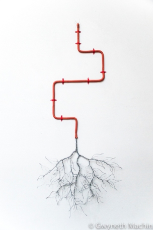 'Live Wire' - 2016