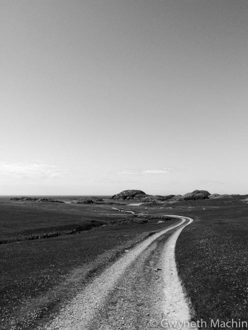 'Paths 3' - 2017